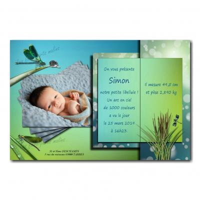 faire part libellule livre ouvert bleu et vert