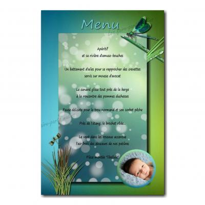 carte de menu avec photo sur fond bleu et vert avec libellule
