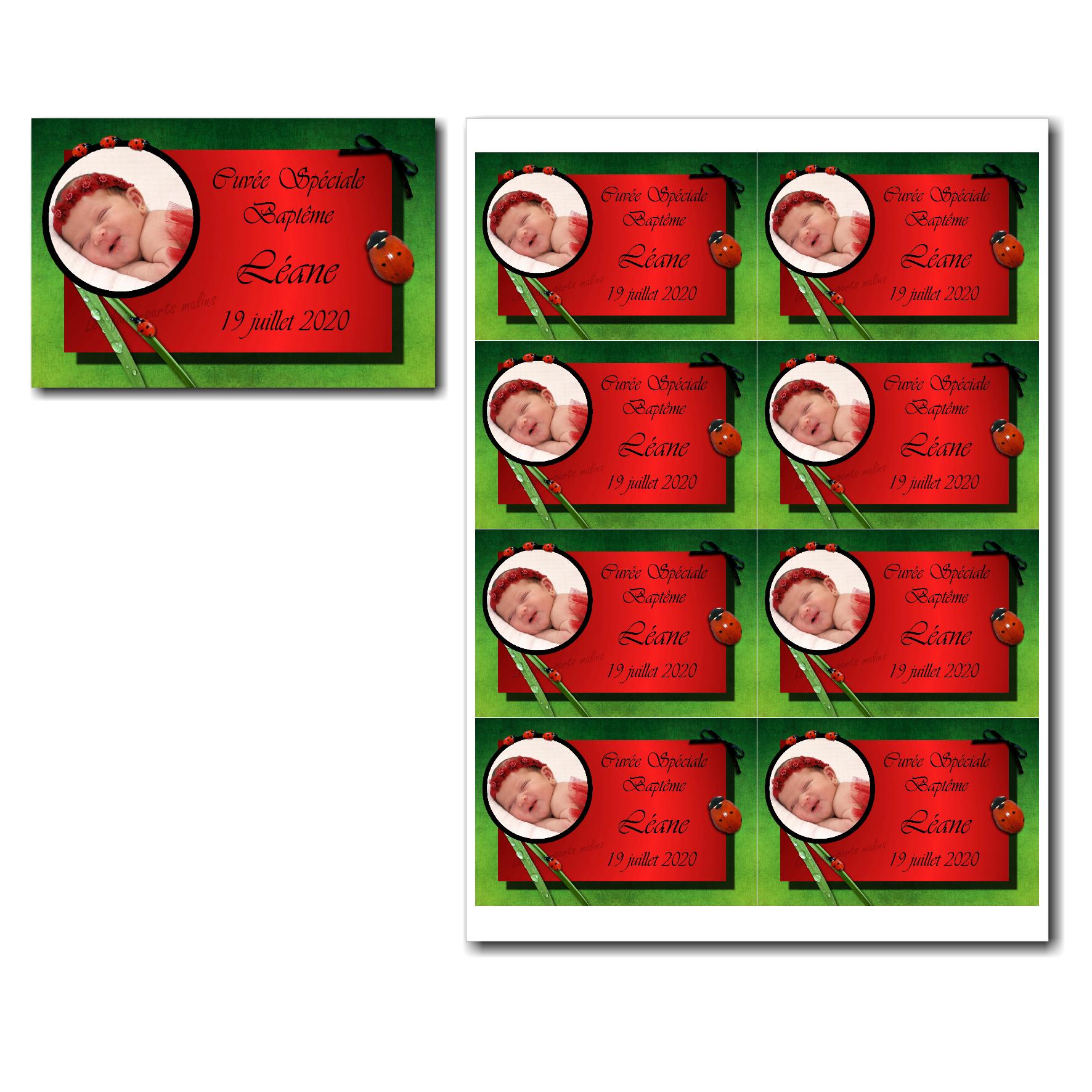 Etiquette bouteille à imprimer rouge et vert avec coccinelle